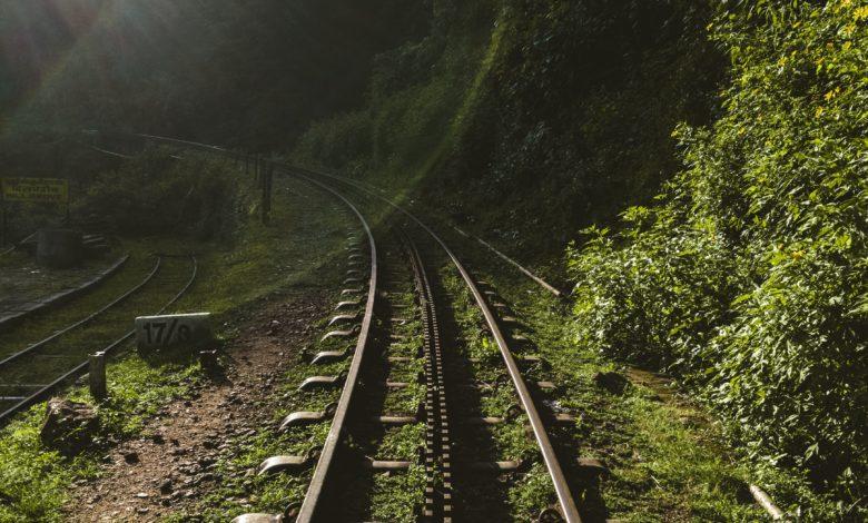 Photo of Добринище- градът на теснолинейката и минералните извори