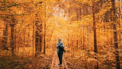 Photo of Почивка на Сандански през есента