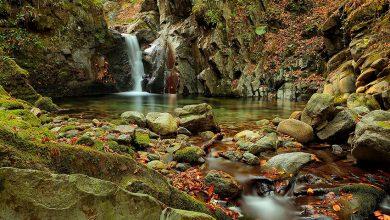 Photo of Екопътека Видимско пръскало – близък досег с природата